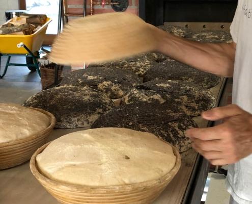 fasi di impasto della lavorazione del pane