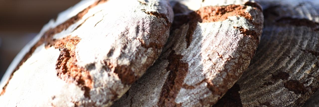 pane biologico di segale 100%