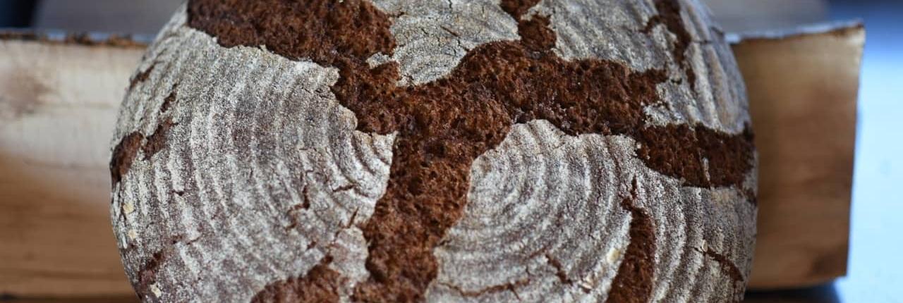 pane biologico di segale