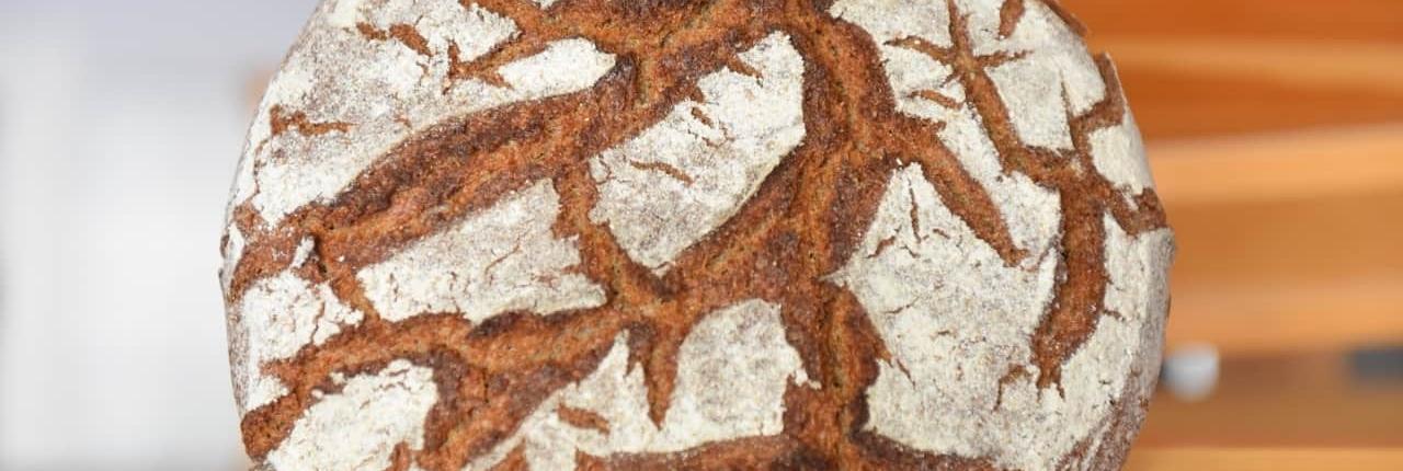 pane biologico di segale misto