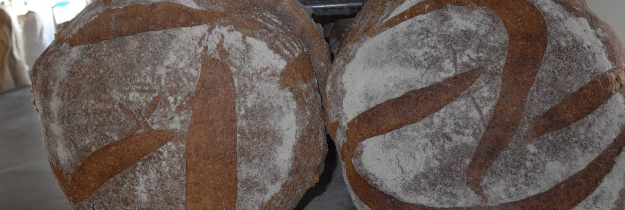 pane di frumento integrale